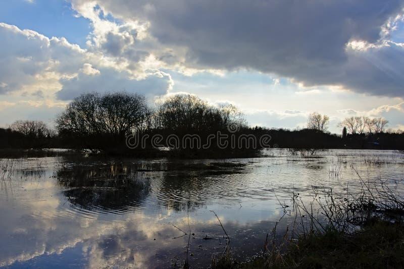 剪影露出反射在水中的灌木和树和黑暗的云彩 免版税库存图片