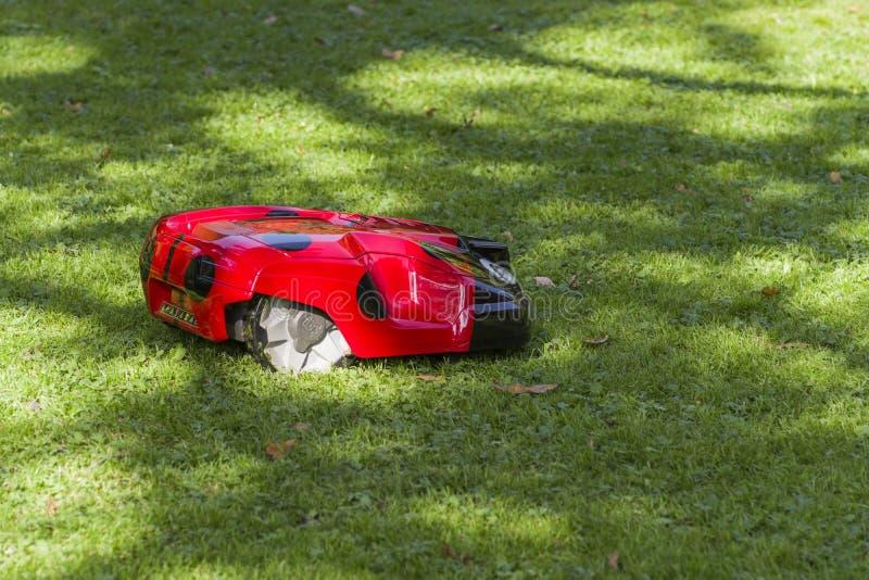割的草坪的机器人 库存图片