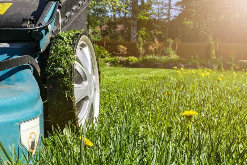 割的草坪,在绿草,刈草机草设备,割的花匠关心工作工具,看法,晴天的关闭的割草机 软的lig 免版税库存图片