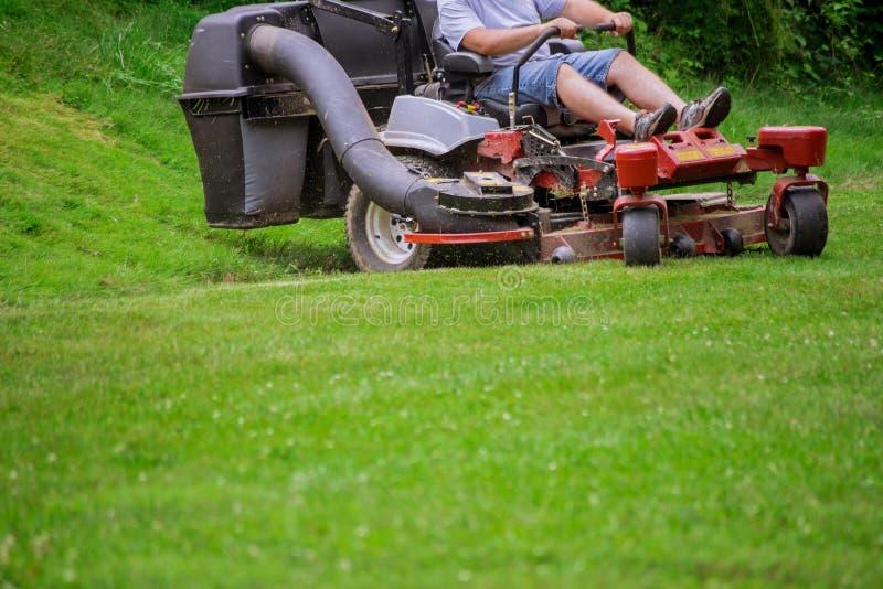 割草坪的花匠剪与园艺工具的草 免版税库存照片