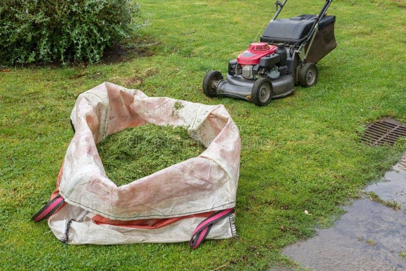 割草机和袋子在绿色草坪的被剪的草 库存照片