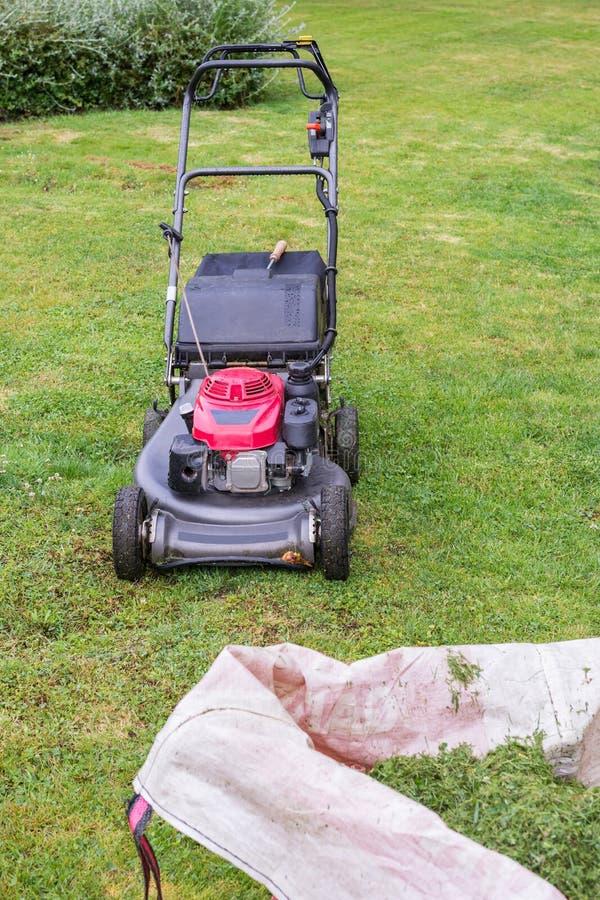 割草机和袋子在绿色草坪的被剪的草 库存图片