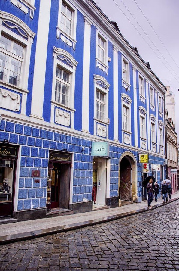 力耶卡,克罗地亚-典型的小镇大街在克罗地亚 免版税库存照片