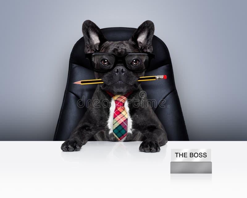 办公室工作者上司狗 免版税库存图片