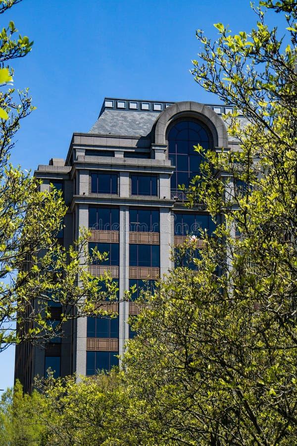 办公楼和树的抽象看法 免版税库存图片