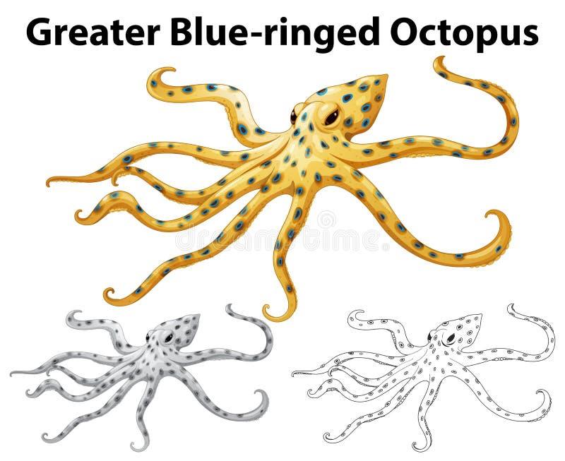 更加伟大的青圈状的章鱼的乱画动物夏天仓鼠趴着就扁了图片