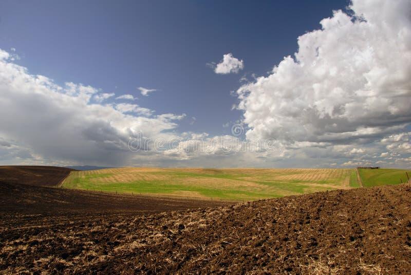加利福尼亚农场土地 免版税库存照片