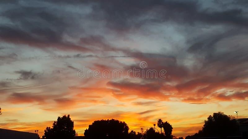加利福尼亚市夜  库存照片