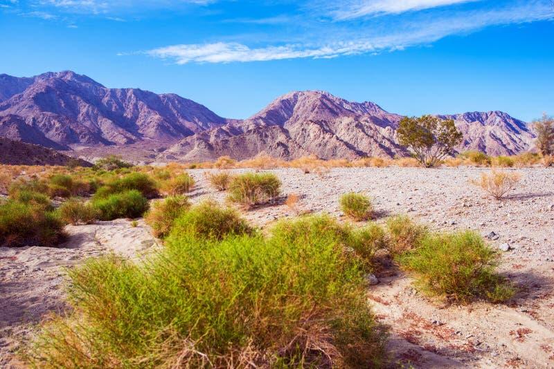 加利福尼亚沙漠土地 免版税库存照片