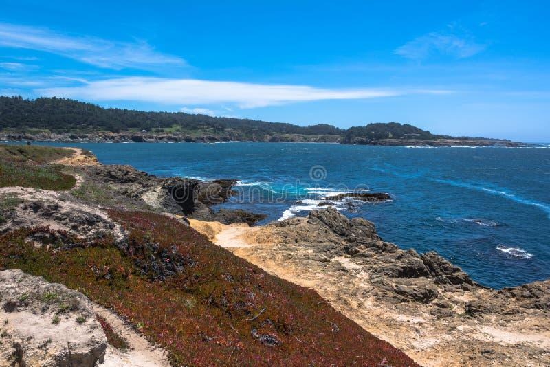 加利福尼亚海岸mendocino 库存照片