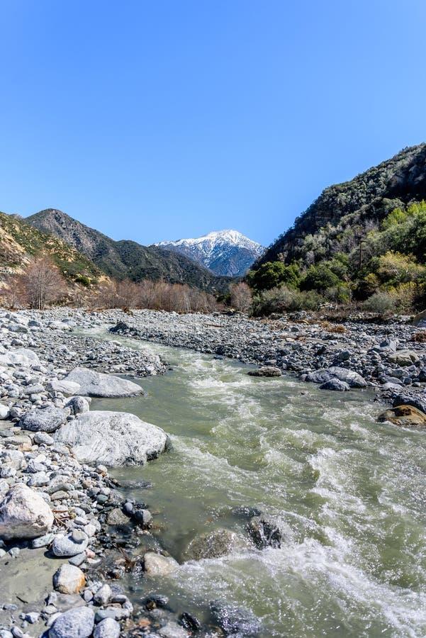 加利福尼亚Mounain小河 库存图片