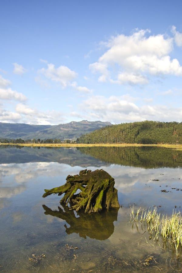 加利西亚的海岸 免版税库存照片