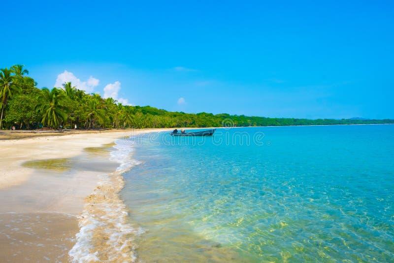 加勒比哥斯达黎加海洋水海滩天堂假期树雨林美好的绿松石水大海惊人的海滩海浪 库存照片