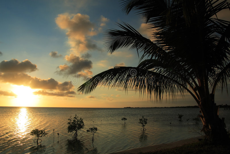 加勒比日落 免版税图库摄影