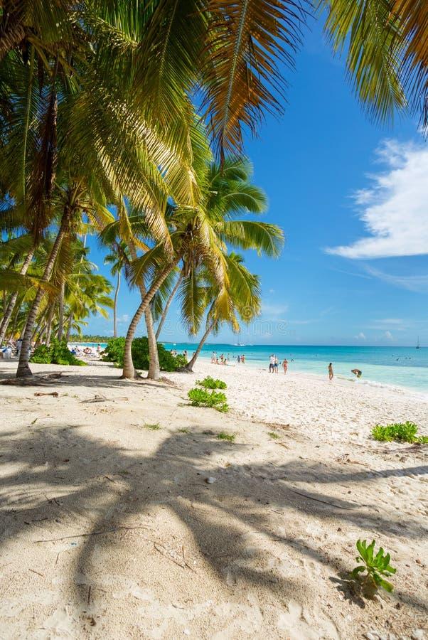 加勒比梦想在绍纳岛,蓬塔Cana,多米尼加共和国 免版税库存图片