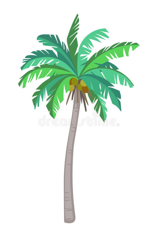 加勒比椰子古巴棕榈树 皇族释放例证