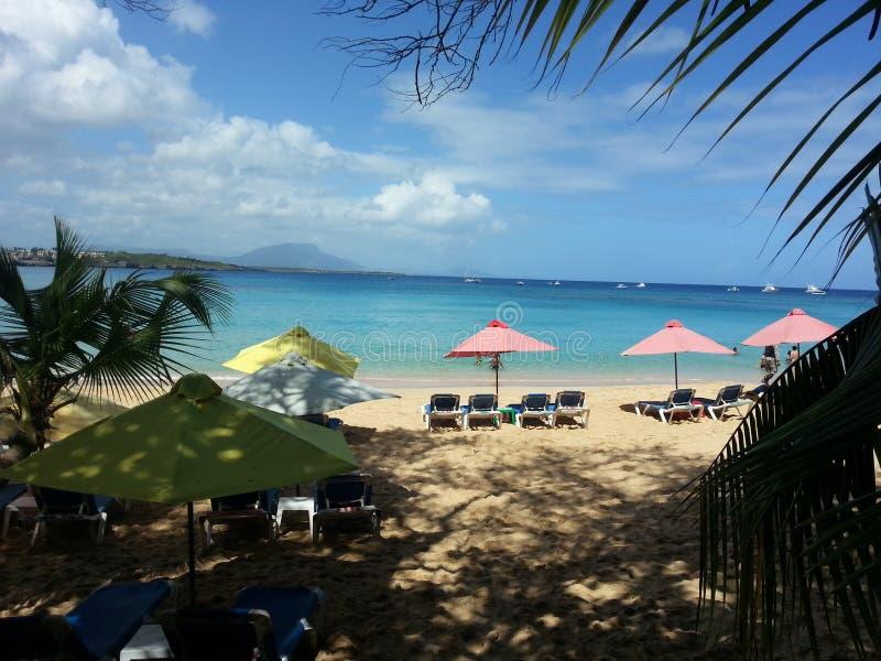 加勒比海洋 库存图片