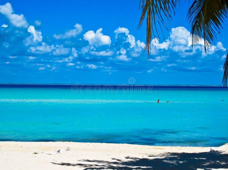 加勒比海滩。 墨西哥 免版税库存图片