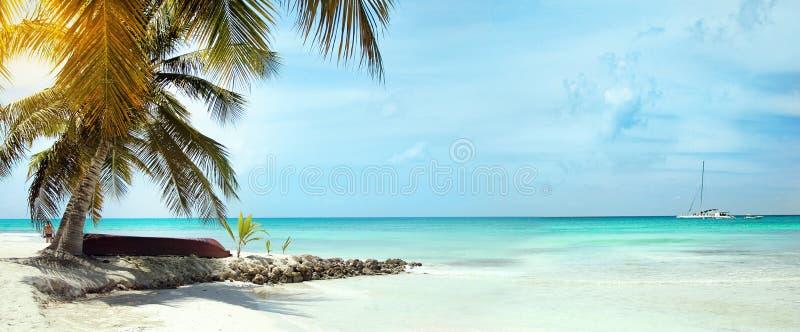 加勒比海的风景有说谎在棕榈树下的小船的在图象的左边 在背景中,a 免版税图库摄影