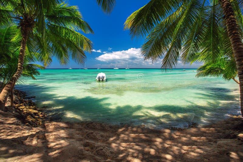 加勒比海,美好的全景 库存图片