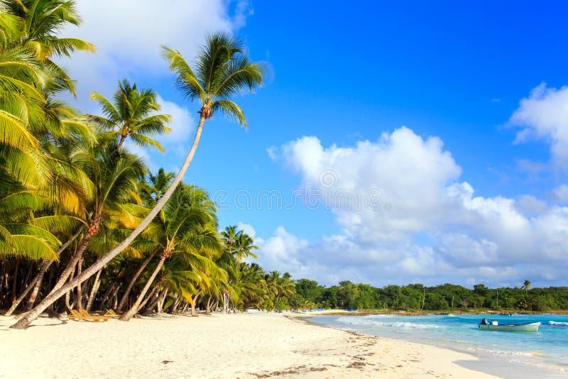 加勒比海滩在多米尼加共和国 库存照片