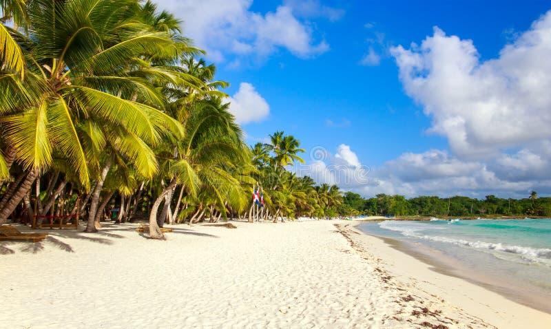 加勒比海滩在多米尼加共和国 库存图片