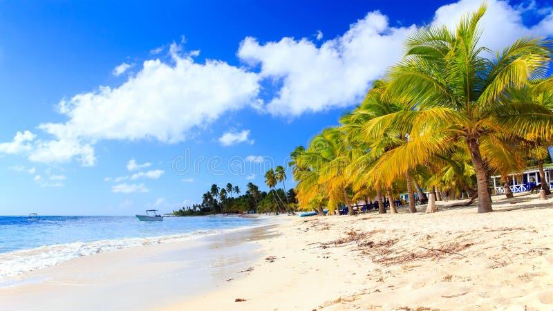 加勒比海滩在多米尼加共和国 免版税库存照片