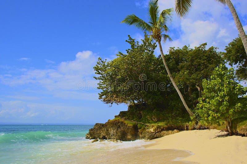 加勒比海滩, Samana海岛,多米尼加共和国 免版税库存照片