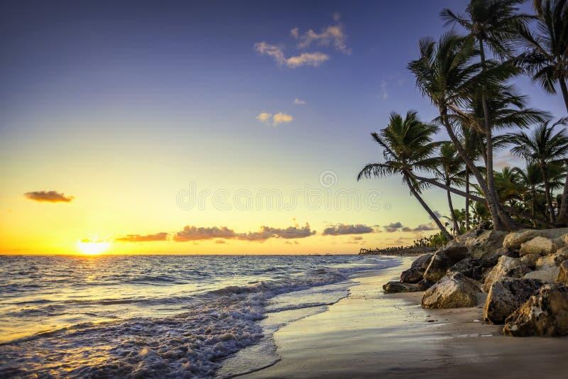 加勒比狂放的海滩,蓬塔Cana 免版税图库摄影