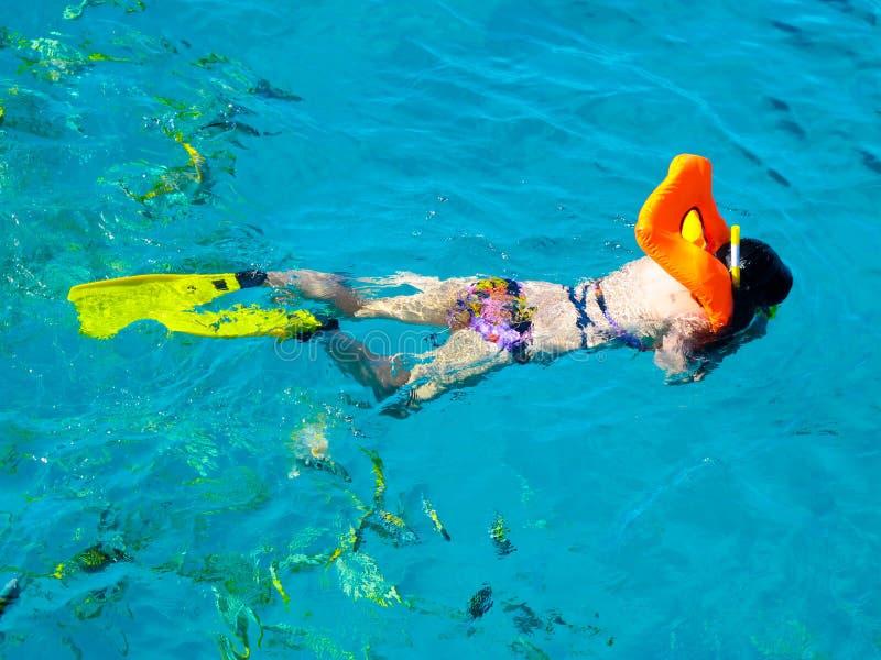 加勒比缓慢地古巴潜水水肺海运 免版税库存图片