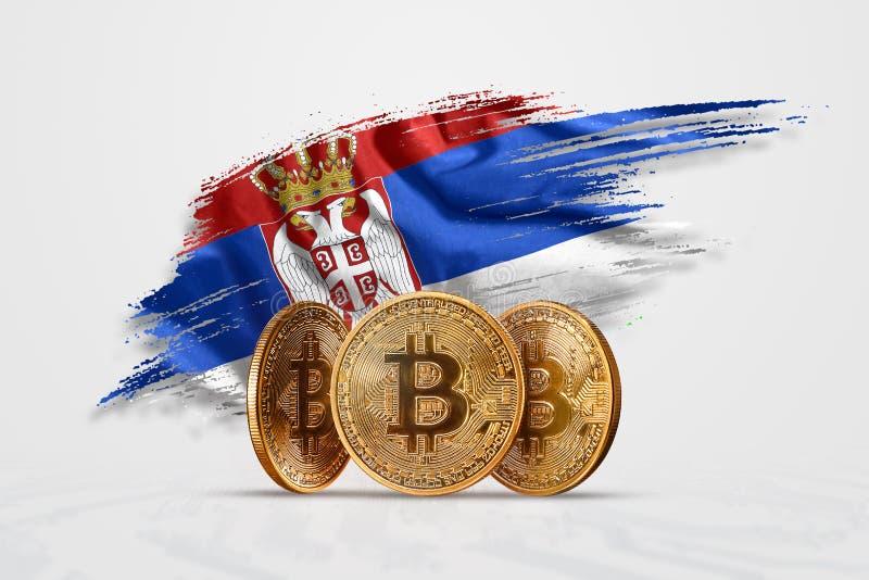 加密货币,金币比特币BTC 塞尔维亚国旗背景下的比特币 新货币的概念, 皇族释放例证