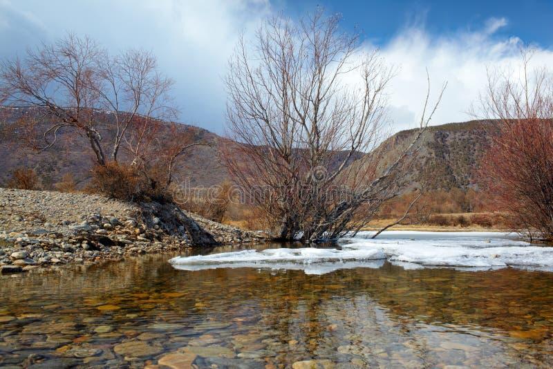 贝加尔湖在冬天 免版税库存图片