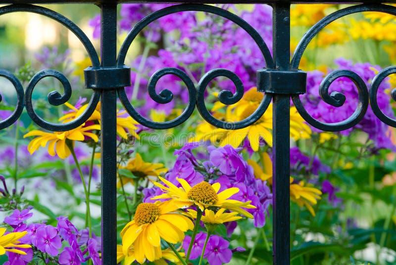 加工铁篱芭有花被弄脏的背景  库存图片