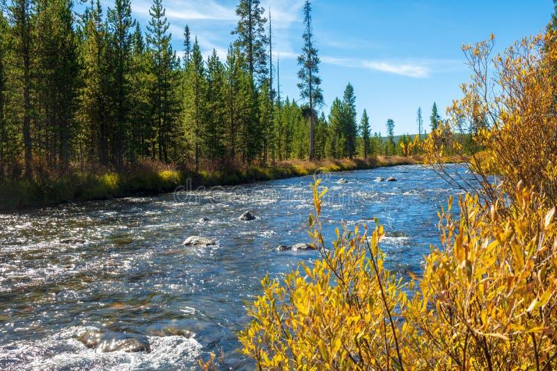 加德纳河在一晴朗的秋天天 免版税库存图片
