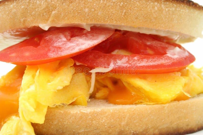 加扰的干酪接近的蛋三明治  库存照片