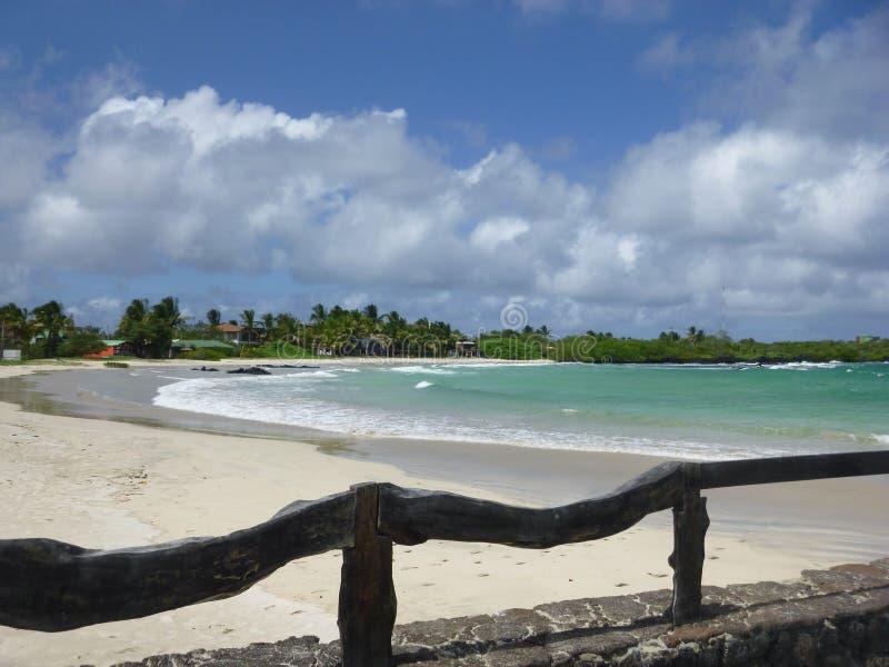 加拉帕戈斯群岛完美 免版税库存照片