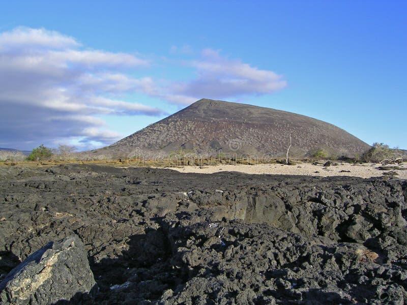 加拉帕戈斯群岛詹姆斯 免版税图库摄影