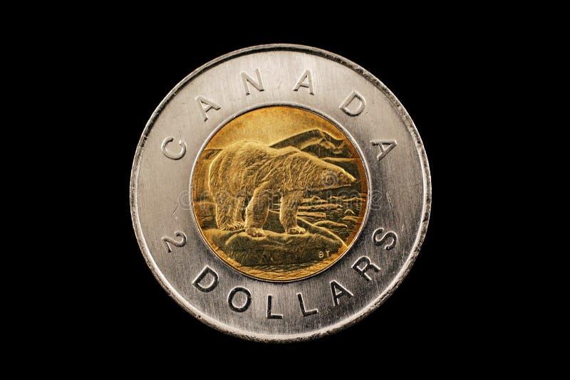 加拿大人在黑色隔绝的两美元硬币 库存照片
