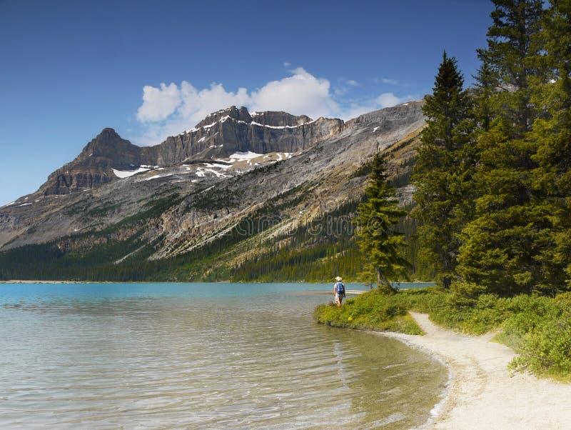 加拿大人罗基斯,远足 免版税库存照片