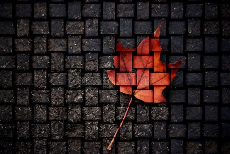 加拿大做 免版税库存照片