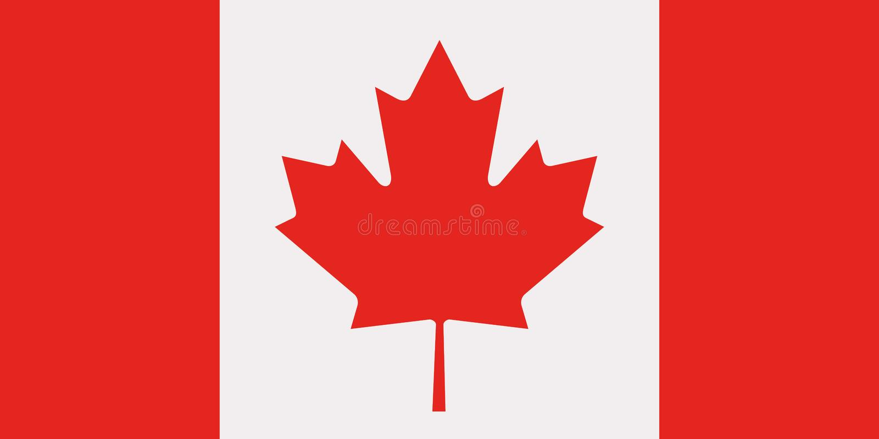 加拿大旗子传染媒介 库存例证