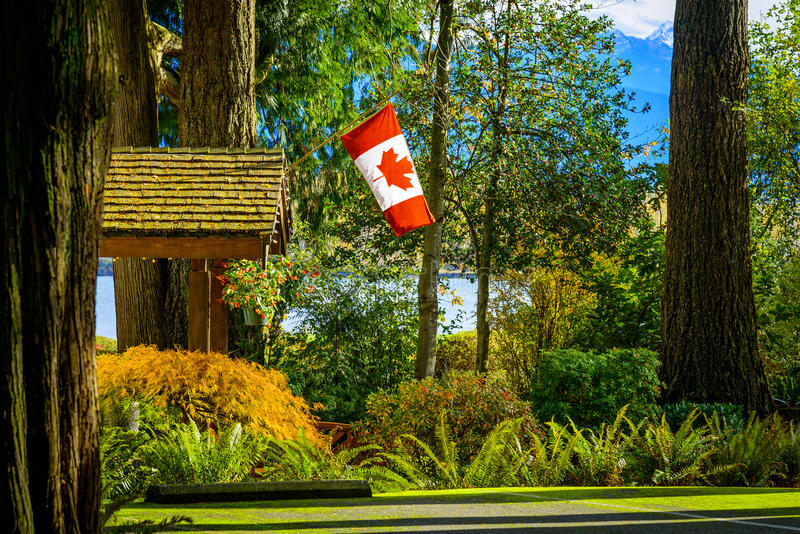 加拿大旗子在森林里, BC,不列颠哥伦比亚省,加拿大 库存照片
