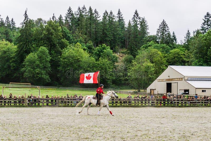 加拿大枫岭 — 2019年7月5日:在最后一天的夏令营秀上,骑马者在赛场上用旗帜 库存图片