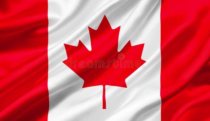 加拿大沙文主义情绪与风, 3D例证 库存例证