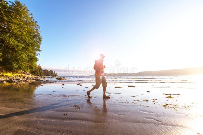 加拿大海景 免版税库存照片