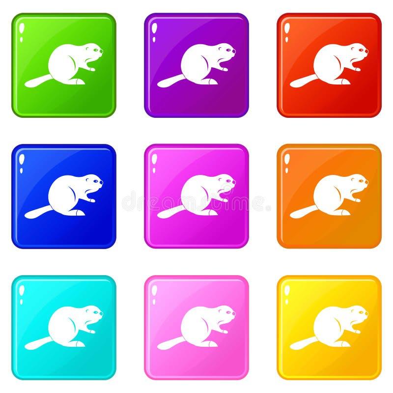 加拿大海狸象9集合 库存例证