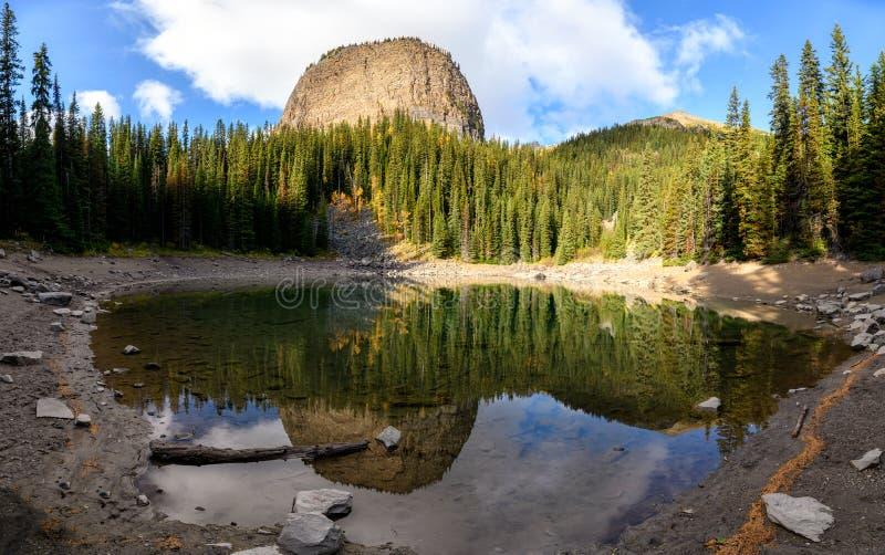 加拿大班夫国家公园路易斯湖池塘松林反射镜湖 库存照片