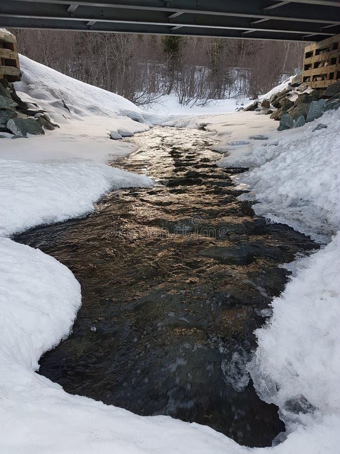从加拿大的风景 免版税库存照片