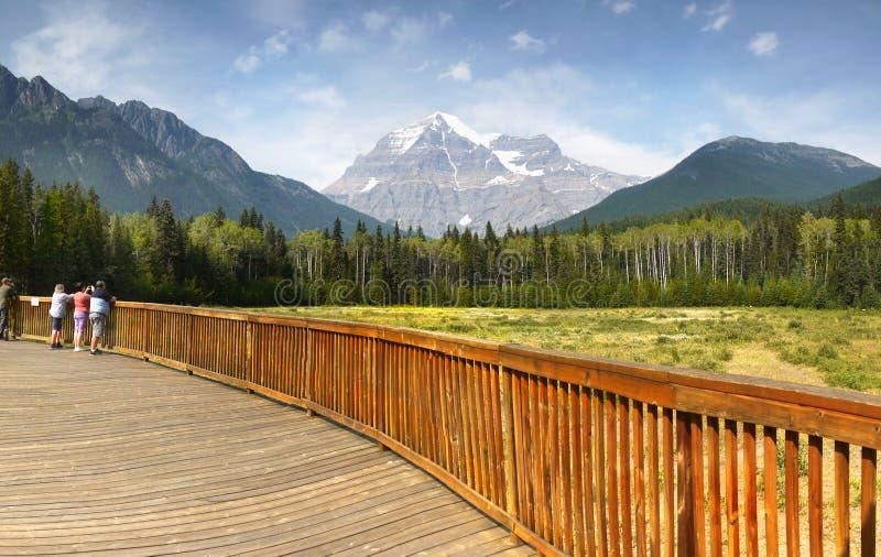 加拿大落矶山脉公园 免版税图库摄影