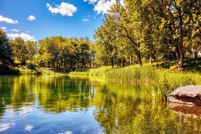 加拿大蒙特利尔La Fontaine公园的池塘、绿草和树木 免版税库存照片
